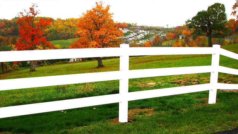 Fall colors in Morgantown, West Virginia