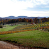 Three Sister's Winery in Dahlonega, Georgia