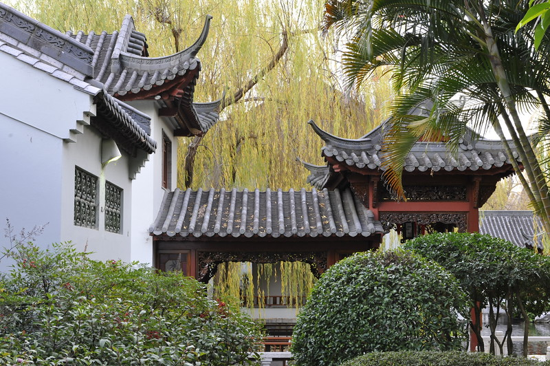 Chinese Garden, Darling Harbour, Sydney, Australia.