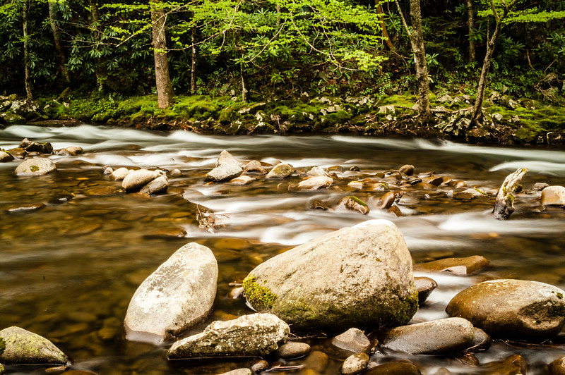 Little River near Elkmont, Great Smoky Mountains National Park, Tennessee