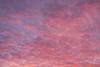 Yuma Sunset_N5A1440