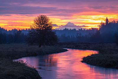 Liquid Sunrise