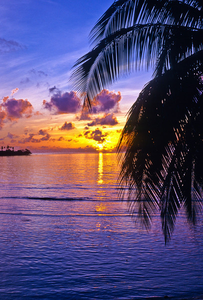 Sunset on Moorea, Society Islands