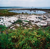 Tidal Pool, Petit Manan National Wildlife Refuge, Maine