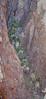Kofa Mountains_N5A0285