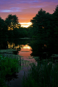 An image from before my forays into HDR photography. Taken at sunset at the Stony Brook Audubon Reserve near my home in Norfolk MA.