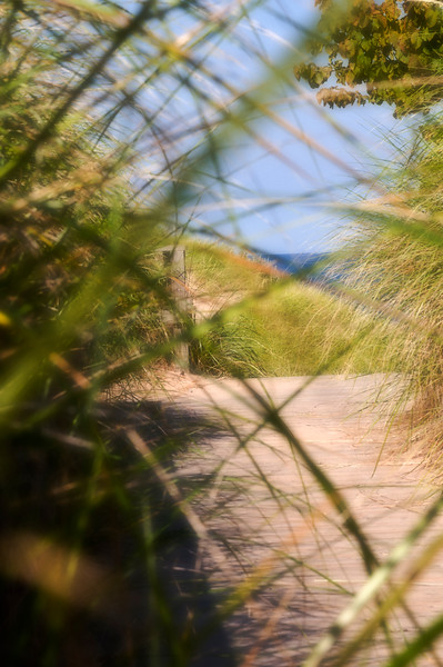 131a Michigan 2008 - Lakewood Park Boardwalk (nik softfocus)