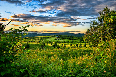 This is a great example of working with what you have. On first inspection of the file, I didn't think I had a workable exposure. With a little persistence and some quality post processing, I was able to come out with something quite nice.  This was taken at sunset in New Hampshire, overlooking a Christmas tree farm.