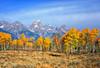 Grand Teton Nation Park, Wyoming