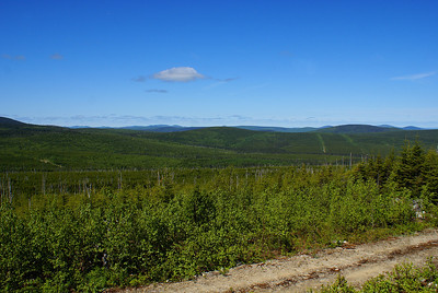I spent the summer of 2010 in the Christmas Mountains of northcentral New Brunswick, studying the threatened Bicknell's thrush with the University of New Brunswick.  The Christmas Mountains were very remote, with untold miles of wilderness punctuated now and again by logging roads.  This is a view from the summit of Sweat Hill, facing west.  A few logging roads are visible in the valley.  Photo taken 31 May 2010.