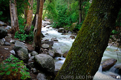 Little Cottonwood Creek, late summer.