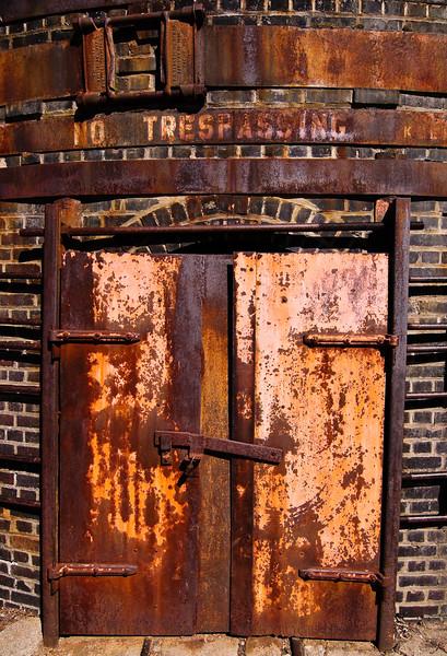 Brick oven door