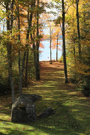 Autumn Lakefront