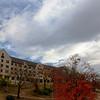 JPG-DLS-IMG_1213-Nov2010-misc