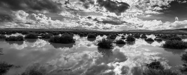 Desert Rain 2