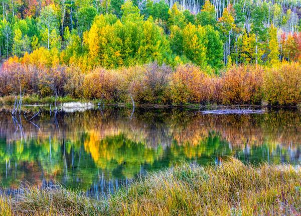 Small Lake, fall in Colorado