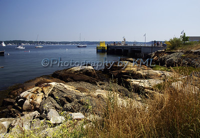 seacoast harbor in the summer