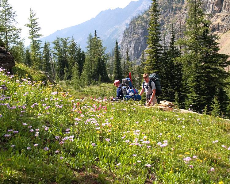 Boulder Pass Trail, Glacier NP, Montana - 2005