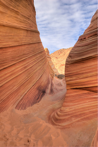 The Wave, North Coyote Buttes, AZ - January 2011