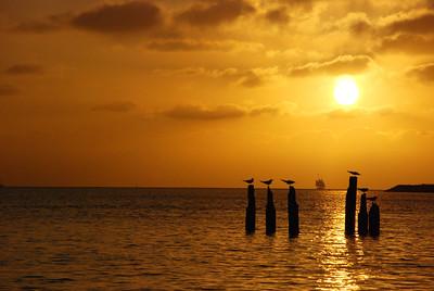 Key West Day 2 (24)