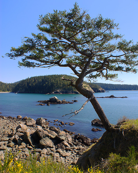 Deception Pass area, Northwest of Whidbey Island Washington.