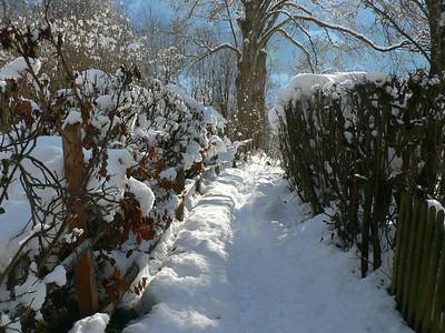 Landschaft 2006