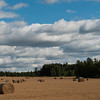 Halmballer / Bales of straw / Ås, Norway