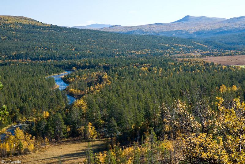 Norwegian landscapes, autumn colours, Folldal, Central Norway.