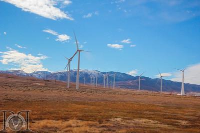 Wind Turbines (Mojave Desert)