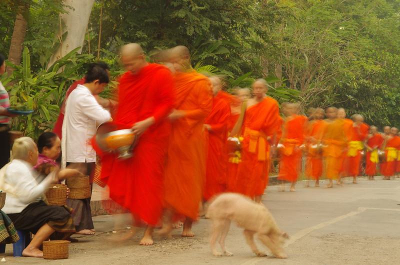 Dagbat in Luang Prabang