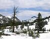 Sonora Pass, Winter