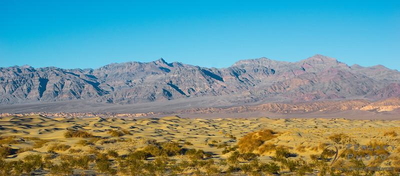 Death Valley - Mesquite Sand Dunes.