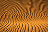 Mesquite dunes Curves, Death Valley