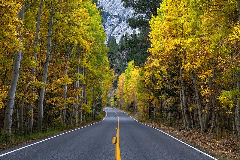Eastern Sierra fall road