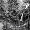 48  G Upper Latourell Falls BW