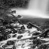 87  G Upper Latourell Falls Close S BW