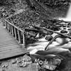 75  G Upper Latourell Falls and Bridge S BW