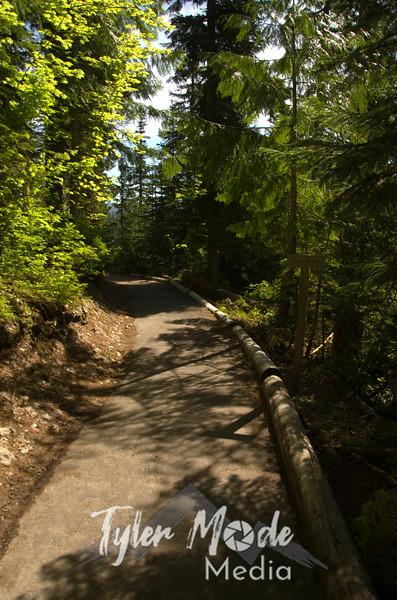 24  G Trail Sun V