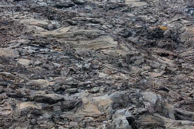 Lava Landscape - Galapagos, Ecuador