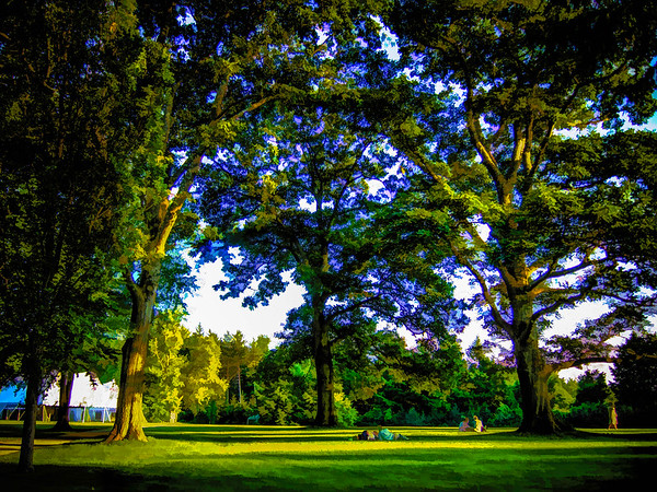 Sunset on the Lawn (Tanglewood)