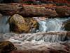 Stream in Zion Natl. Park