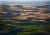 LIght and Shadow in the Palouse Hills