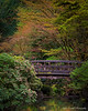 Portland Japanese Garden in the Spring