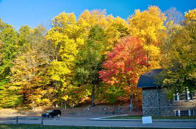 Fall foliage by Letchworth Museum