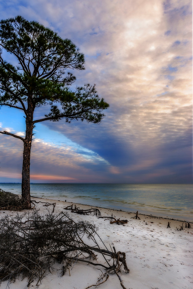 Morning calm after a stormy night, End of Marshes Sand Road, Florida overlooking Apalachee Bay