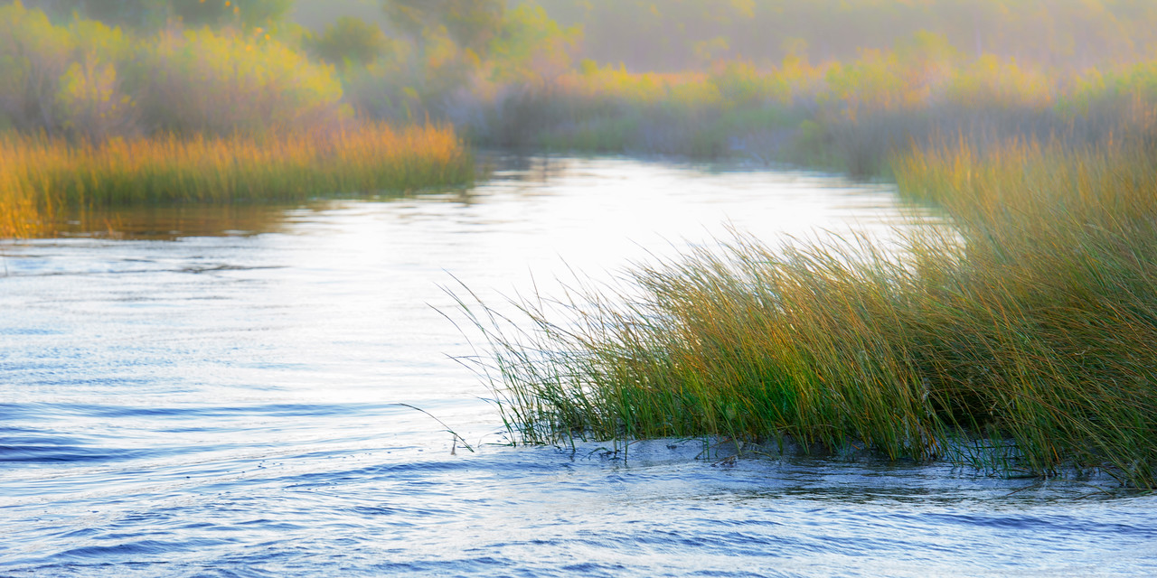 Fall morning near Apalachicola, FL, just past Green Point, a tidal creek feeds the bay on an outgoing tide