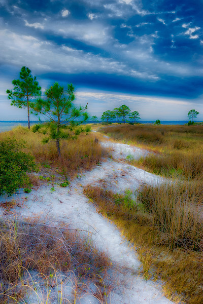 At the end of Marshes Sand Road, Florida