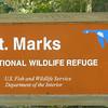 St  Marks National Wildlife Refuge_012812 _P1120527
