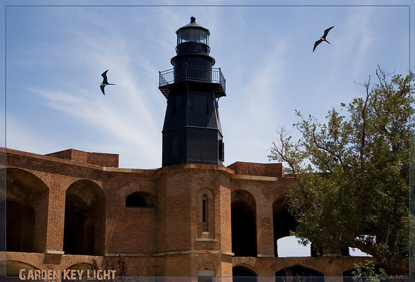 Garden Key Light from inside the hexagonal fortress of Ft. Jefferson - Gibraltar of the Gulf!!<br /> The birds are female Great Frigatebirds. They have a seven ft wingspan and are beautiful to watch. Riding the thermals around the lighthouse, they seem almost suspended in place.