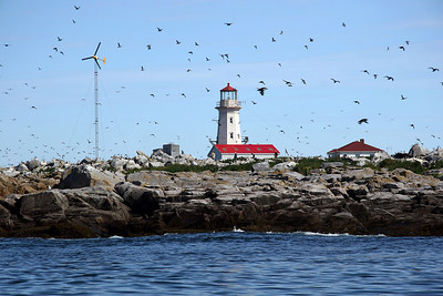 Machias Seal Island Light Located on the Bay of Fundy Known Puffin breeding ground.